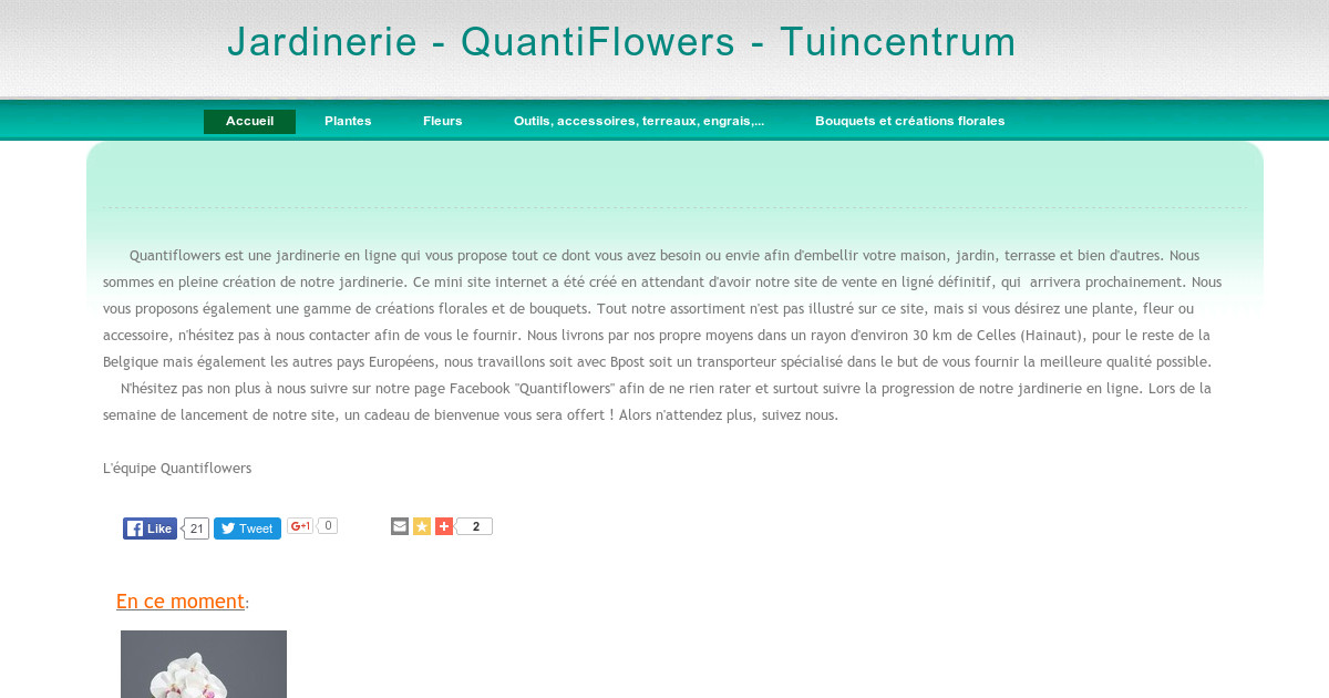 Jardinerie quantiflowers tuincentrum accueil for Jardinerie internet
